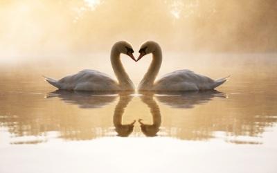 Qui se sent digne d'aimer
