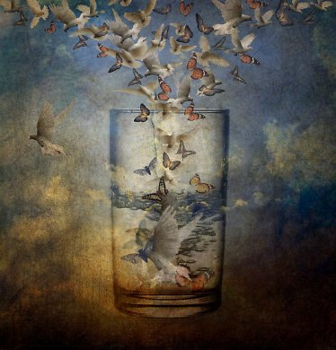 Glass always half full Anji Johnston