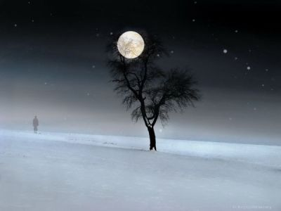 Arbre neige lune homme