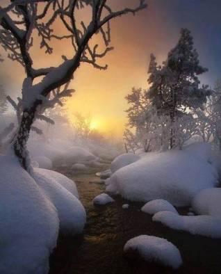 Soleil couchant dans la neige