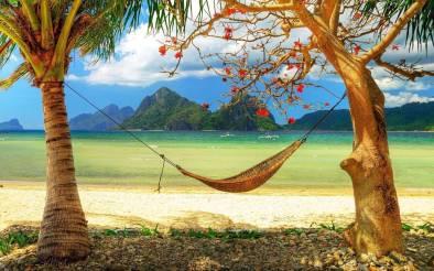 Hamac miracle vacances