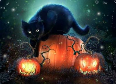 Chat noir Halloween