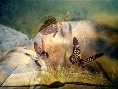Papillon roupillon