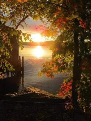 Soleil feuilles automne