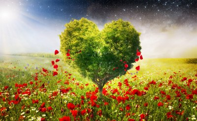 green_tree_of_love_skyphoenixx1_stars_heart