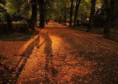 Couple mains ombre automne