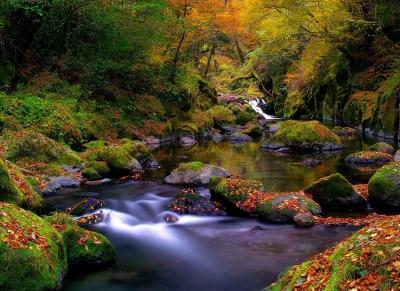 source-automne-magie